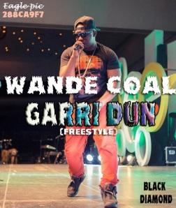 wande-Coal N360
